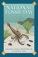 National Fossil Day - Home | science matters ky | Scoop.it