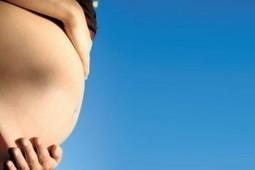 Ciencia - Primer embarazo con trasplante de útero | Salud&Medicina | Scoop.it