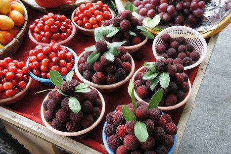 Yangmei, Shanghai's Summertime Superfruit | La cuisine japonaise | Scoop.it