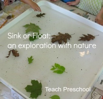 Sink or Float: an exploration with nature   Teach Preschool   Scoop.it
