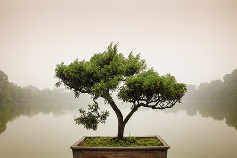 7 Design Principles, Inspired By Zen Wisdom | Zen | Scoop.it