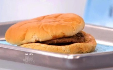 McDonald's hamburger looks the same after 14 years  - Telegraph | food is good | Scoop.it