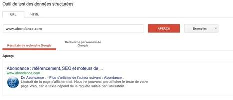 Google affiche des logos d'entreprise dans ses 'rich snippets' - Actualité Abondance | Votre branding en IRL | Scoop.it