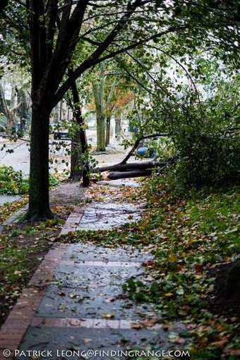 Aftermath of Hurricane Sandy in Brooklyn With My Fuji X-Pro1 And X100 | X-Pro 1 by Fuji | Scoop.it