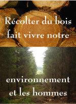 Avis: Electricité ou Pompe à chaleur et le Grenelle de l'environnement | éco-hameaux, écoquartiers et villes durables | Scoop.it