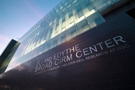 The Broad Foundation advances stem cell research at USC - USC News   High achieving college students: career and educational options   Scoop.it