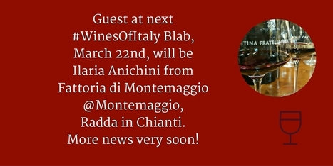 WinesOfItaly Blab with Montemaggio Winery | Wine, history and culture... | Scoop.it