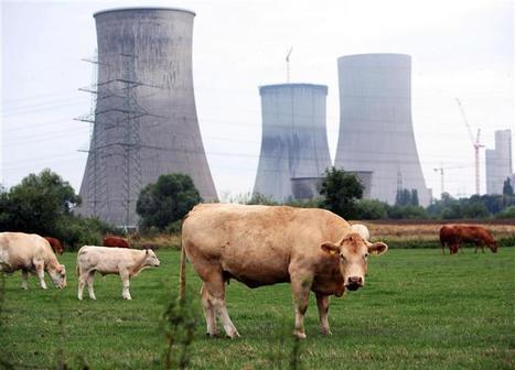 Nucléaire : Questions centrales - 23 mn - Docs ad Hoc - LCP - Assemblée nationale - 2011   documentaires   Scoop.it