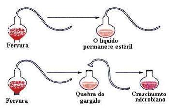 Abiogênese x Biogênese - InfoEscola | Aulas de Biologia do 1º ano - Escola da Vila | Scoop.it