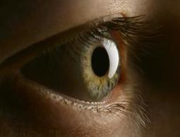 'Solar panel' eye implant promises sight without wires - tech - 13 May 2012 - New Scientist | Cyborg Lives | Scoop.it