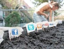 3 conseils pour améliorer sa veille concurrentielle sur les réseaux sociaux | Communication - Marketing - Web | Scoop.it