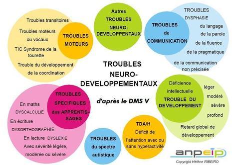 ANPEIP - Les troubles neuro-développementaux | PSYCHOMOTRICITÉ | Scoop.it