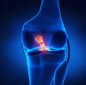 Arthroscopic Surgery-An Insight! | Health & Fashion | Scoop.it