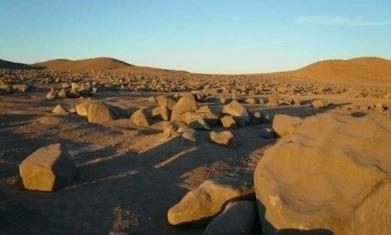 Le lieu le plus sec au monde abrite des formes de vie | Les déserts dans le monde | Scoop.it