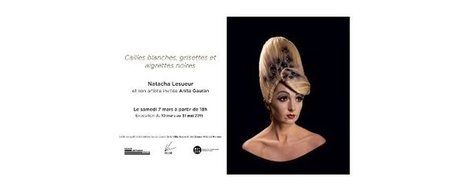 Cailles blanches, grisettes et aigrettes noires - Art Côte d'Azur | typographie, nouveaux médias | Scoop.it