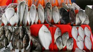 Peru cuts commercial fishing drastically on worries about stocks | In Deep Water | Scoop.it