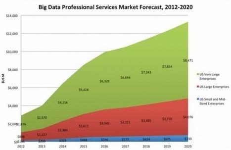 Les services professionnels de Big Data en croissance de 15% par an   Business Intelligence   Scoop.it