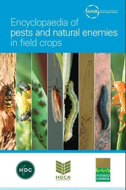 Indispensable : Encyclopédie des ravageurs et auxiliaires en plein champ (AHDB) | HORTICULTURE BOTANIQUE | Scoop.it