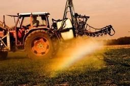 Pesticides : Plainte déposée par une ouvrière agricole, victime des pesticides. | Autres Vérités | Scoop.it
