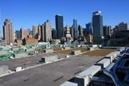 Durham firm lands big deal for 'green roof' at NYC Javits Center :: The Skinny at WRAL Tech Wire | Vertical Farm - Food Factory | Scoop.it