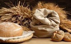Produrre il pane usando i Grani Antichi   Fuga dal benessere   Scoop.it