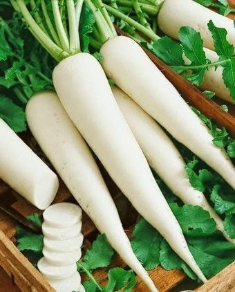 प्राकृतिक उपचार: पौष्टिक गुणों का भंडार है मूली | Herbs and Health | Scoop.it