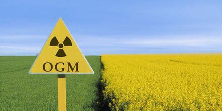 Comment les Etats-Unis ont manipulé le Prix de l'alimentation 2013 pour promouvoir les OGMComment   Alim attention   Scoop.it