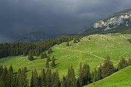 WWF attracts British tourists to Maramures in the Romanian Carpathians | travel different | Scoop.it
