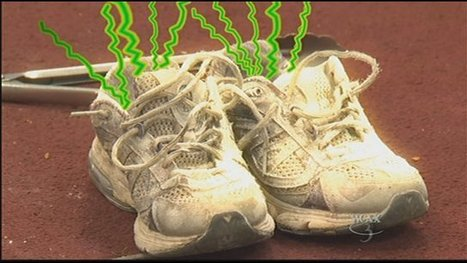 Sniffing out the nation's smelliest sneakers | It's Show Prep for Radio | Scoop.it