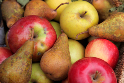 Antibiotic in Organic Pears and Apples? No, Says Organic Board | EcoWatch | Scoop.it