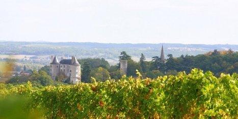 Viticulture : la belle santé de la Cave des Vignerons de Buzet | Le vin quotidien | Scoop.it
