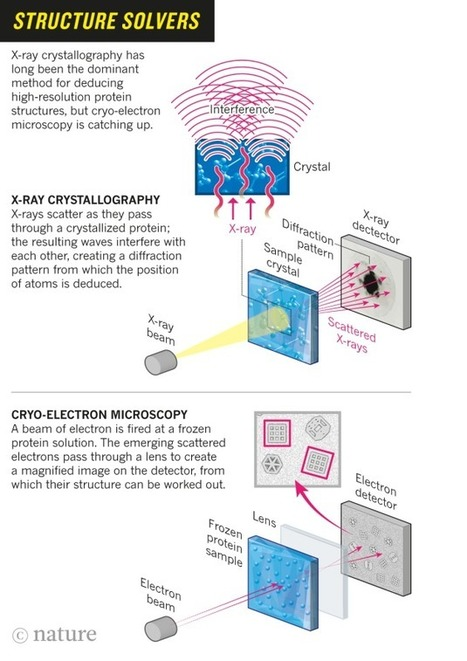 The revolution will not be crystallized: a new method sweeps through structural biology | Amazing Science | Scoop.it