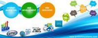 Web Development Industrial Training in Chandigarh | Brill Infosystems | Scoop.it