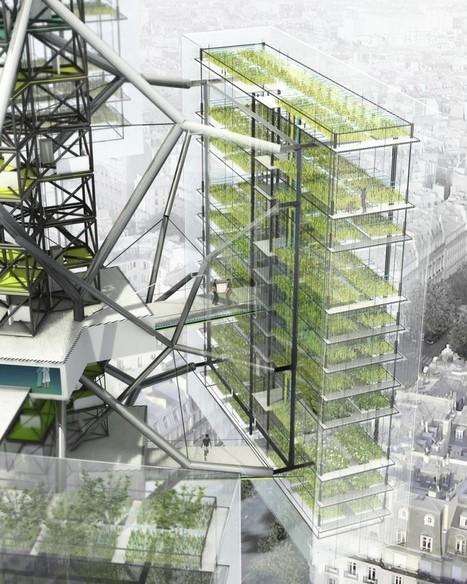 Launch of new Agricultural Urbanism Lab | Sustain Magazine | BUILT ENVIRONMENT MATTERS | Vertical Farm - Food Factory | Scoop.it