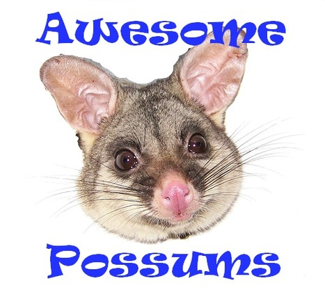 Possum Tech: Direct Thyself 2.0 | Teacher-Librarianship | Scoop.it