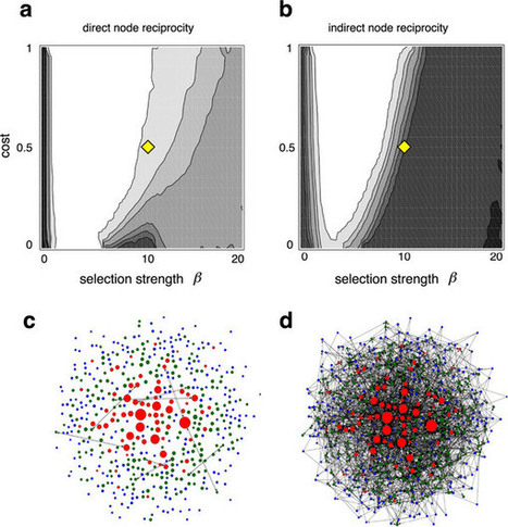 Origin and Structure of Dynamic Cooperative Networks | Social Foraging | Scoop.it