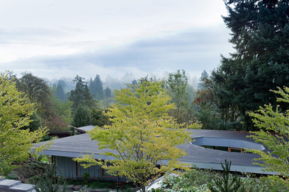 A Modern House in the Forest Designed for Aging In Place | Aesthetics & Space | Scoop.it