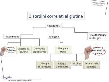 Chiacchierando di…. Sensibilità al glutine | Not only gluten-free | celiachia network | Scoop.it