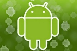 Android App Development Guide: The Dichotomy of Android   Android App Development Guide   Scoop.it