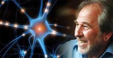 Bruce Lipton: Epigenetics – How Your Mind Can Reprogram Your Genes | Optimal Health & Biohacking | Scoop.it