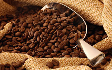(EN) – Coffee Terminology – The language of coffee | moorecoffee.com | Coffeehouse | Scoop.it