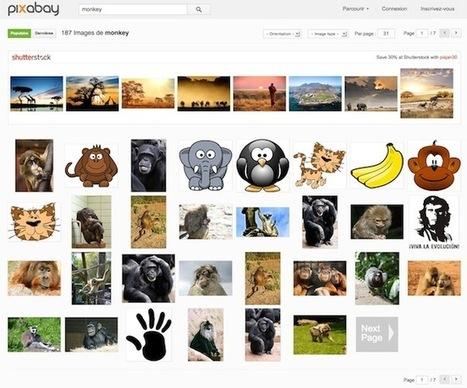 Pixabay – Des photos de qualité dans le domaine public | Time to Learn | Scoop.it