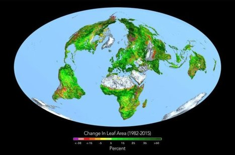 Increased levels of CO2 actually making Earth greener | Vloasis sci-tech | Scoop.it