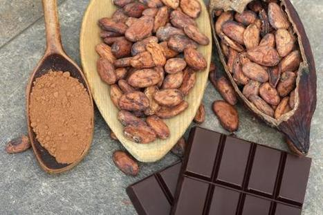 Here's How We're Going to Solve the Global Chocolate Shortage - Slate Magazine (blog) | Agricultural Biodiversity | Scoop.it