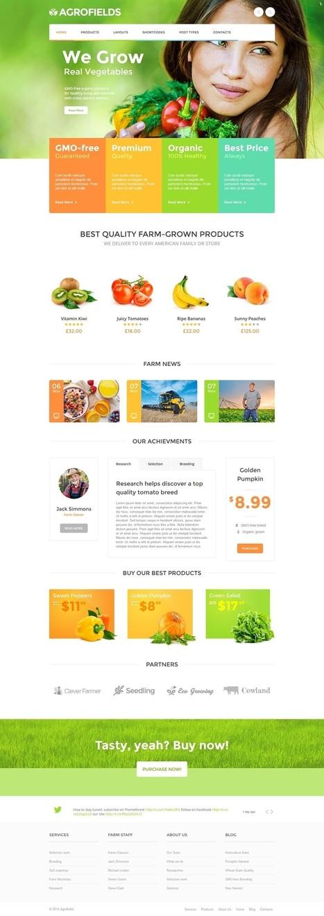 10+ Best Organic WordPress Themes 2015   Professional WordPress Themes Designs   Scoop.it