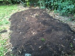 What's in your Hugelkultur? | Farmer D Blog | Pasture raised, Grass fed Pigs | Scoop.it