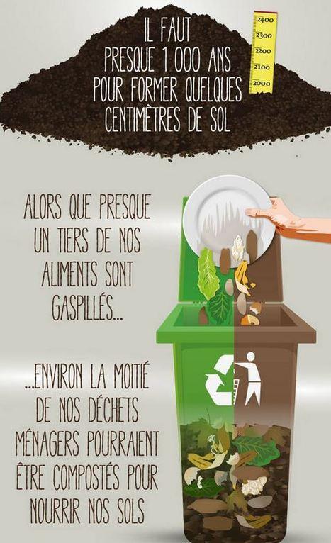 Infographie : Les fonctions du sol et les risques encourus | Chimie verte et agroécologie | Scoop.it