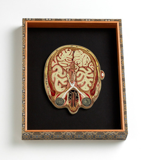 Neuro Images | Brains & Things | Scoop.it