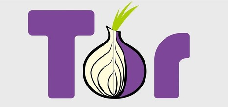 How to Use Traffic Analysis to Defeat TOR | The Special Circumstances of Infosec | Scoop.it