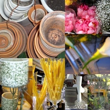 paumée: Une lecture des vases communicants de janvier | Les vases communicants | Scoop.it
